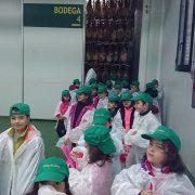 ds_visita_escolares_nov_14_fabrica